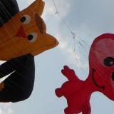 Drachenfest_2011_026