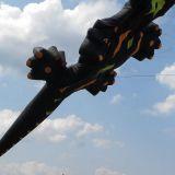 Drachenfest_2011_037