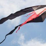 Drachenfest_2012-0042